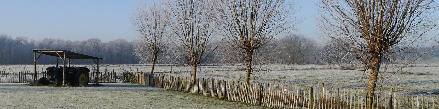 Winter (4) (Kopie)
