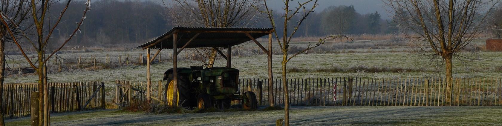 Winter (6) (Kopie)