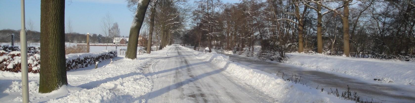 Winter (8) (Kopie)